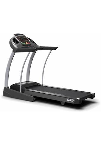 Horizon Fitness Laufband »Elite T5.1«, 20km/h kaufen