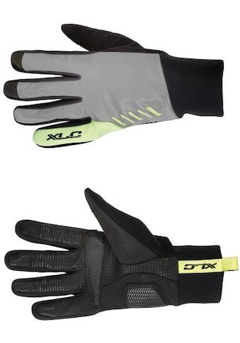 XLC Fahrradhandschuhe »Winterhandschuh CG-L12« kaufen
