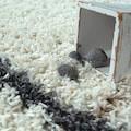 Hochflor-Teppich, »Helsinki 530«, Paco Home, rechteckig, Höhe 45 mm, maschinell gewebt