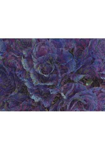 Consalnet Vliestapete »Violette Blumen«, floral kaufen
