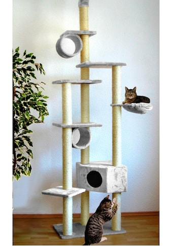 SILVIO design Kratzbaum »Cherry«, hoch, BxTxH: 80x50x230-260 cm kaufen