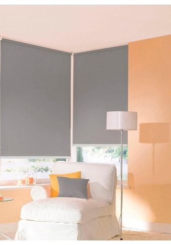 Seitenzugrollo »One size Style uni«, sunlines, Lichtschutz, ohne Bohren, freihängend kaufen