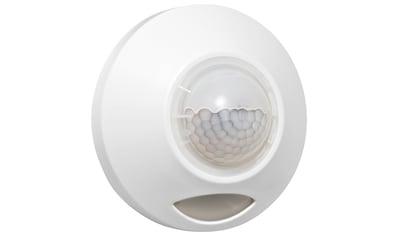 GEV Batterie LED - Leuchte »LLL 360« kaufen