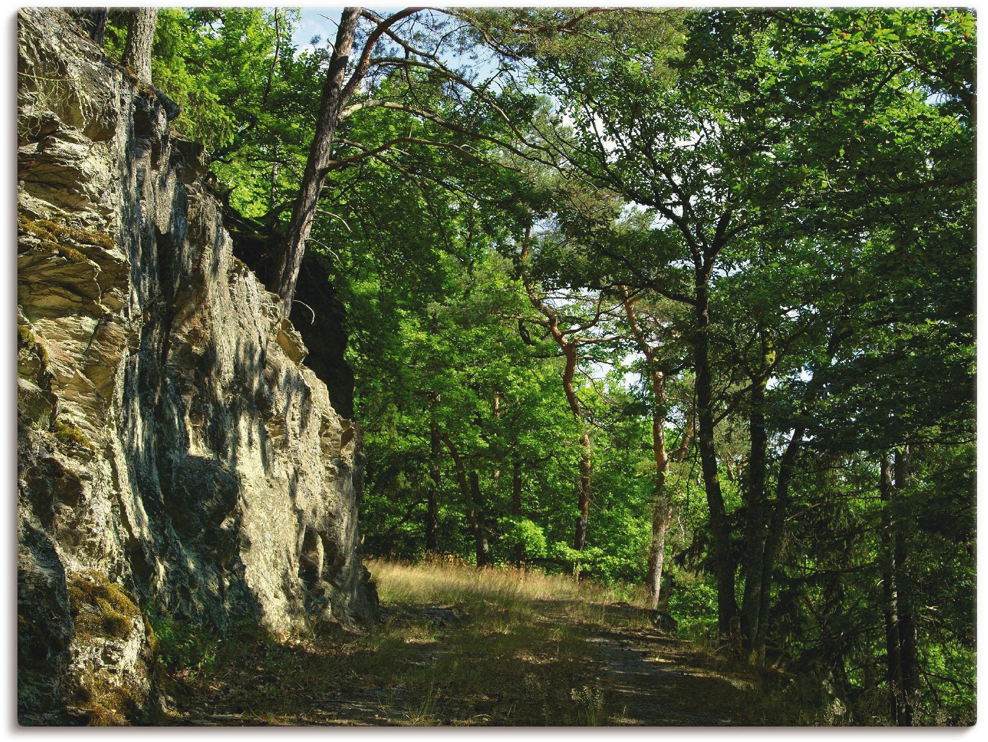 Artland Wandbild »Waldweg am Felsen« | Dekoration > Bilder und Rahmen | Artland