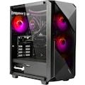 Hyrican Gaming-PC »Striker 6603«