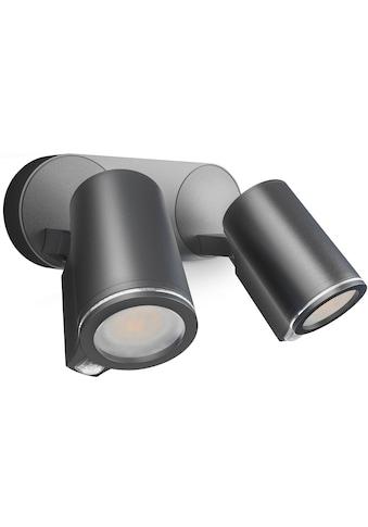 steinel LED Außen-Wandleuchte »Spot DUO SC«, LED-Board, Warmweiß, 180°... kaufen