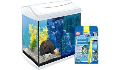 Tetra Aquarien-Set »AquaArt LED«, 30 Liter, BxTxH: 38,5x28x43 cm, inkl. GC 30 Bodenreiniger kaufen