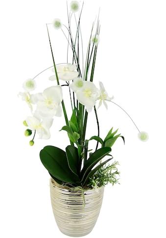 I.GE.A. Kunstblume »Arrangement Orchidee/Gras«, Topf aus Keramik kaufen