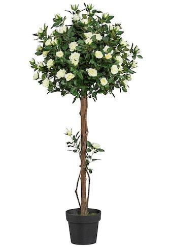 Creativ green Kunstpflanze »Rosenkugelbaum« (1 Stück) kaufen