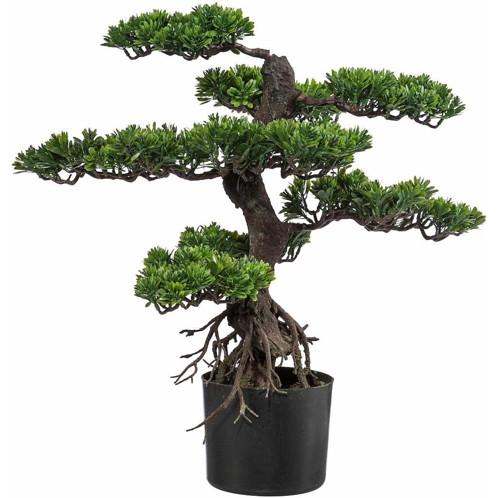 Creativ green Kunstbonsai »Bonsai« (1 Stück)
