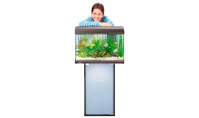 Tetra Aquarien - Unterschrank »Tetra AquaArt« für 60 l Aquarien kaufen