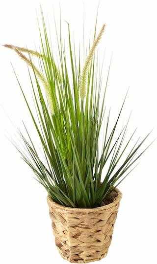 home affaire kunstpflanze gras im kunststofftopf auf rechnung bestellen. Black Bedroom Furniture Sets. Home Design Ideas