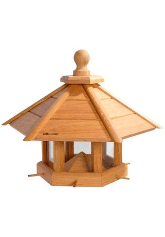 LUXUS-VOGELHAUS Vogelhaus »Anflug«, BxTxH: 55x62x43 cm kaufen
