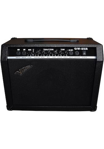Verstärker »MSA - GW 25 R«, für Gitarren kaufen